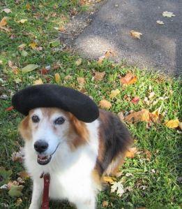 bailey's beret